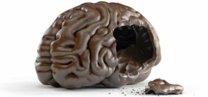 chocolate as brain food