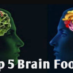 Five Common Memory Foods To Increase Your Brain Power