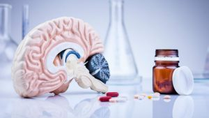 best brain supplements in the world