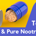 Top 4 Best & Pure Nootropics For Your Mental Boost & Performance