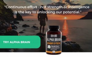 brain inflammation supplements